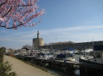 Port Intercommunal maritime de plaisance d'Aigues-Mortes