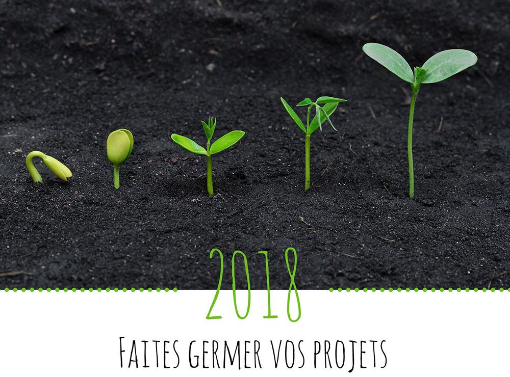Toute l'équipe de la Communauté de communes Terre de Camargue vous souhaite une excellente année 2018
