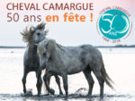 Week end de festivités les 28 et 29 avril 2018 pour les 50 ans du classement du cheval de race Camargue : au Domaine du Petit Saint-Jean à Saint Laurent d'Aigouze