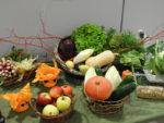 Table de découverte des légumes au restaurant scolaire Séverin à Aigues-Mortes