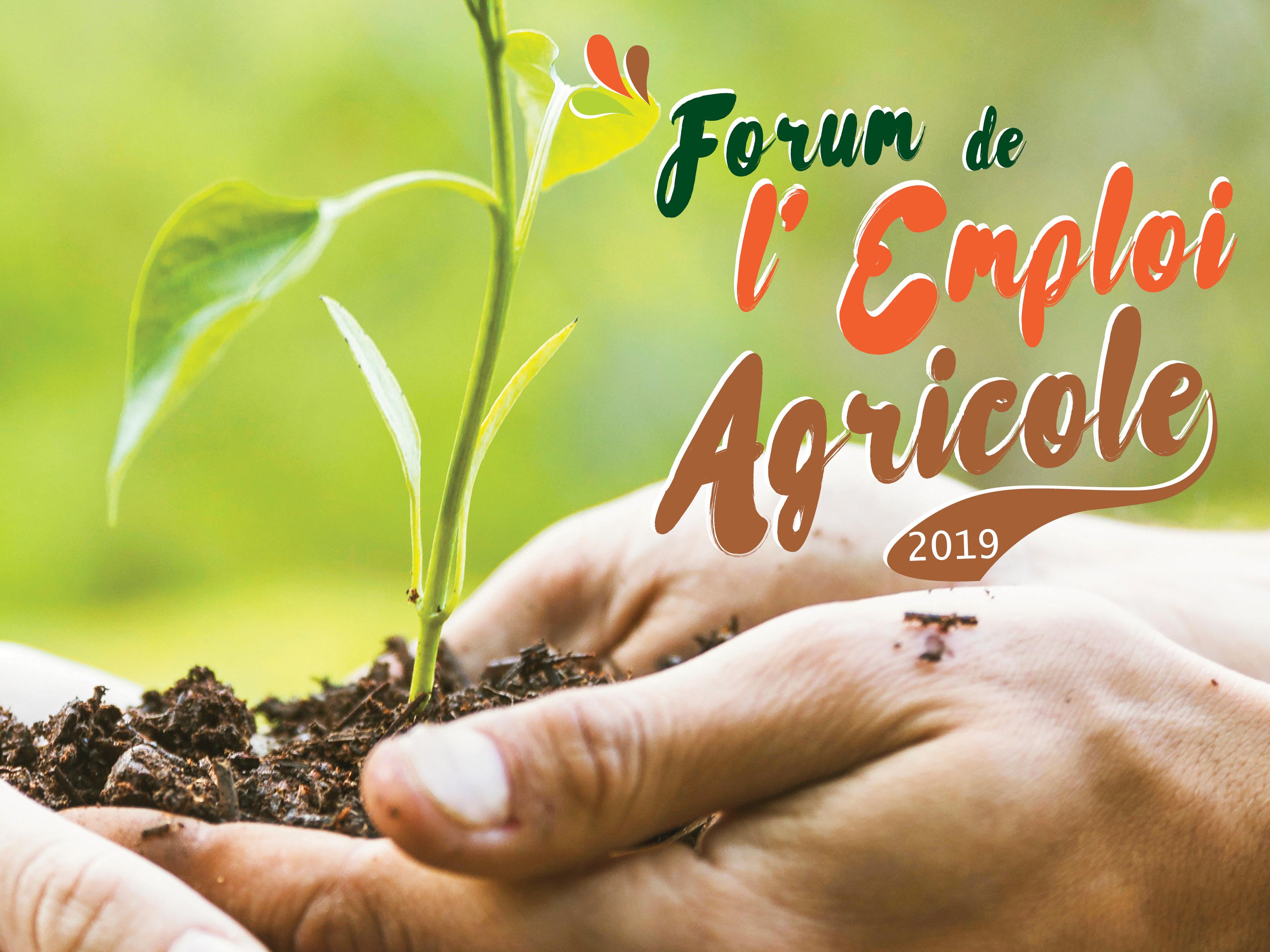 Forum de l'emploi agricole en terre de Camargue, 26 février 2019 à Aigues-Mortes
